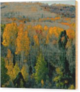 Fall Ridge Wood Print