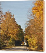 Fall Road Wood Print