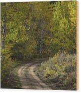 Fall Roads Wood Print