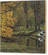 Fall Rowboat Wood Print