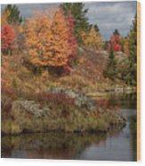 Fall Scene 3 Wood Print