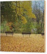 Fall Series 13 Wood Print