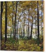 Fall Series 3 Wood Print