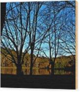 Fall Silhouette Wood Print