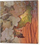 Fall Spectrum Wood Print
