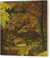 Fall Spendor - Series Number Three Wood Print