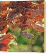 Fall Spiderweb Wood Print