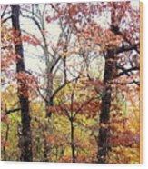 Fall Splatter Wood Print by Deborah  Crew-Johnson
