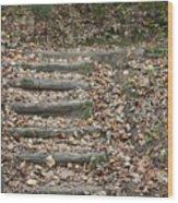 Fall Stairs Wood Print
