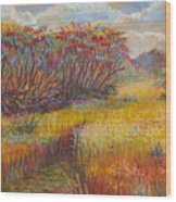 Fall Sumac Fields Wood Print