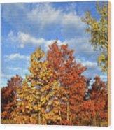 Fall Sunrise On Hackmatack Nwr Oaks Wood Print