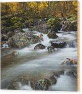 Fall Surge Wood Print