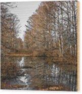 Fall Swamp Wood Print
