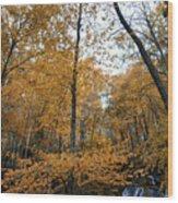 Fall Tees At  Yankee Horse Overlook   Wood Print