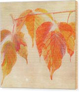 Fall Together Wood Print