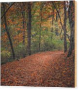 Fall Trail Wood Print