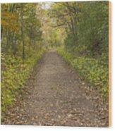 Fall Trail Scene 48 Wood Print