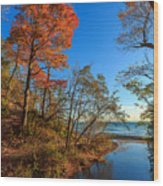 Fall Trails Wood Print