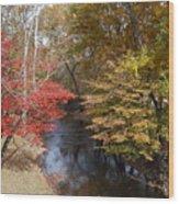 Fall Transition Wood Print