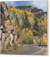 Fall Travel Wood Print