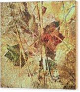 Fall Treasures Wood Print