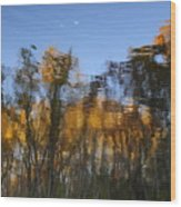 Fall Trees Reflected Wood Print