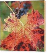 Fall Vine Wood Print