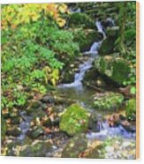 Fall Waterfall Wood Print
