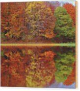 Fall Waters Wood Print