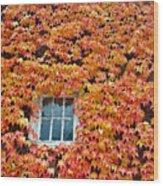 Fall Window Wood Print