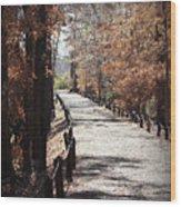 Fall Wonder Land Wood Print