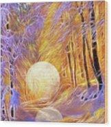 Falled Moon Wood Print