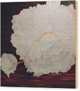 Fallen Begonia Wood Print