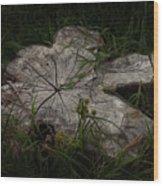 Fallen But Not Forgotten Wood Print