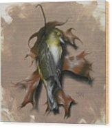 Fallen Finch Wood Print by Timothy Jones