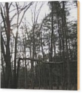 Fallen Giant Wood Print