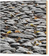 Fallen Leaves On A Street At Autumn Wood Print