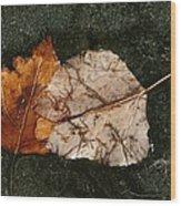 Fallen Leaves On Frozen Water Wood Print