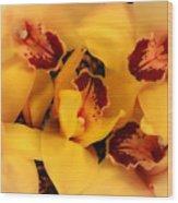 Fallen Orchids Wood Print