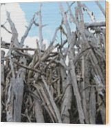 Fallen Palm Wood Print by Mandy Shupp