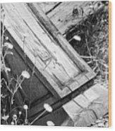 Fallen Pillar Wood Print