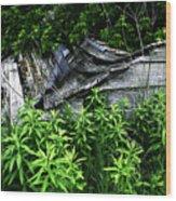 Fallen Shed Wood Print