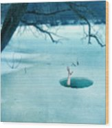 Fallen Through The Ice Wood Print