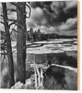 Fallen Trees In The Moose River Wood Print