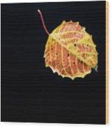 Falling Birch Leaf Wood Print