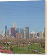 Falling For Chicago Wood Print