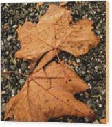 Falling Leafs Wood Print