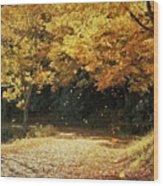 Bass Lake Falling Leaves Wood Print