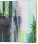 Falling Waters 1 Wood Print by Anil Nene