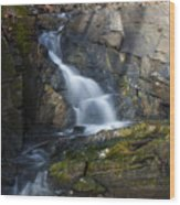 Falling Waters In February #2 Wood Print
